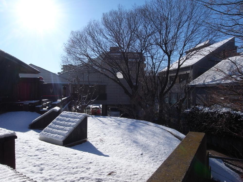 雪 屋上緑化 独楽蔵