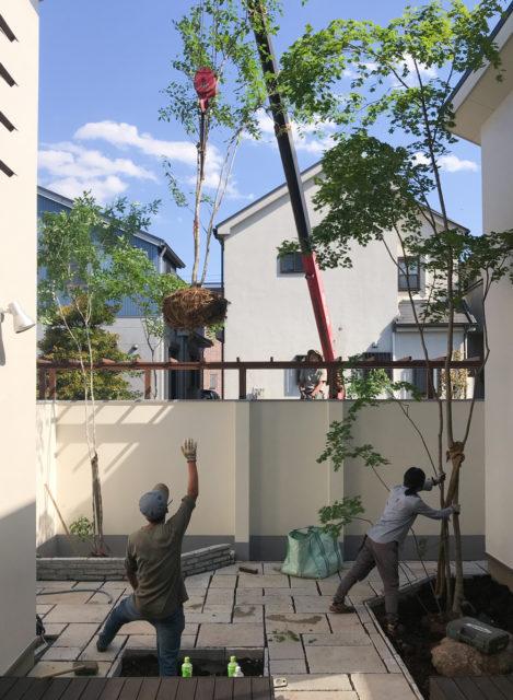 お庭のお仕事の画像