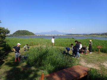 【水鳥公園(米子)で、なぜかメダカ獲り】子育ての画像