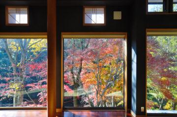 清河園・別館(紅葉)完成から2年目の画像