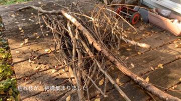 【自宅の庭で薪ストーブの点火材用の『柴刈り』へ】埼玉の家づくり その後の画像