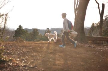 【高麗峠を抜けて、メッツァへお散歩】日高市の『家づくり』その後の画像