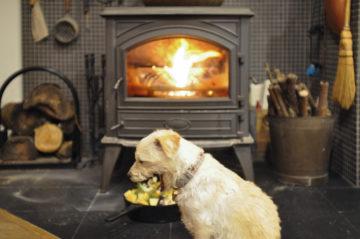 【うちで過ごそう】薪ストーブ&ダッチオーブンで、チキン料理の画像