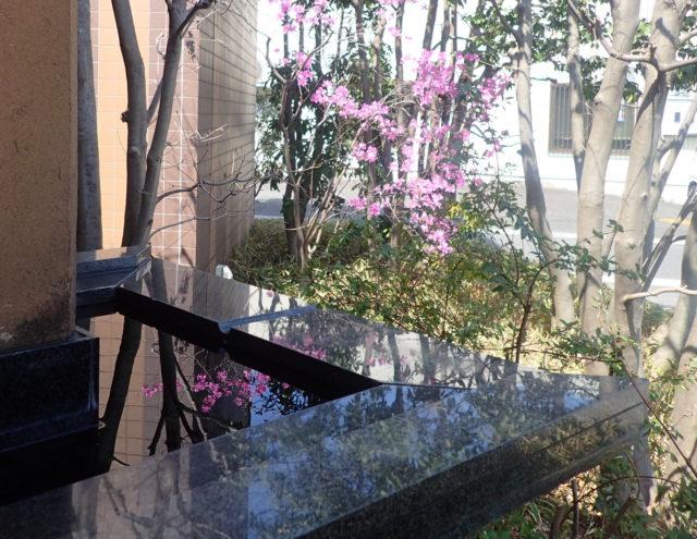 【屋根の雨水を黒御影石の水鉢に・・・】埼玉 建築設計事務所のデザインの画像