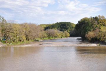 高麗川沿いに建つ住宅のガーデンツアー①,②の画像