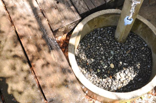 【家で過ごそう!】庭の水場の掃除の画像