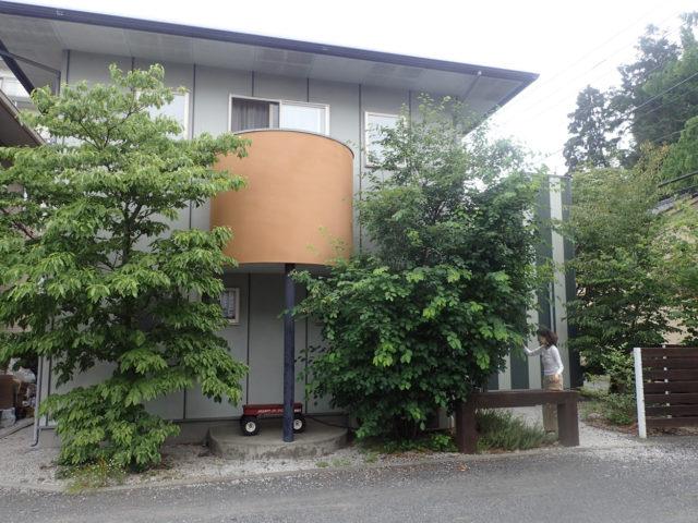 【完成から12年の住宅 庭木の成長】入間市 設計事務所の家づくりの画像