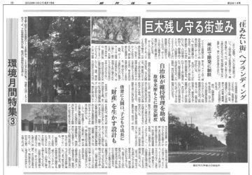 業界新聞「週刊住宅」で『巨木を残し守る街並み』というテーマで取材の画像