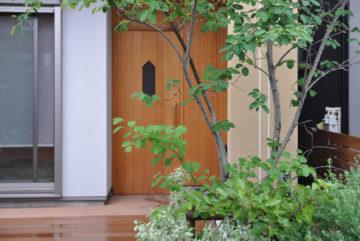 竣工から約1年半の庭(川越市)の画像