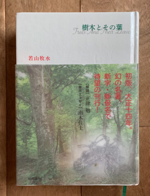 『樹木とその葉』若山牧水 (牧水を通してみる山河の風景)の画像