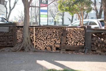 独楽蔵アトリエ 冬の枝おろし 2021(入間市 設計事務所)の画像