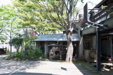 【設計事務所のアトリエ】 武蔵野の庭 春の庭掃き(入間市)の画像