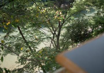 川三昧の一日(名栗川&高麗川)の画像