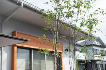 新築住宅 完成後の外構工事(環境整備:入間市の木造平家)の画像