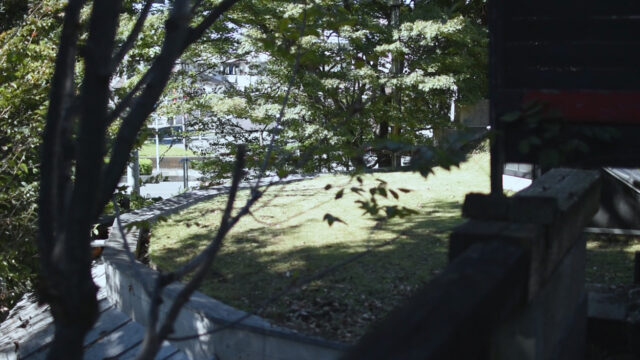 【設計事務所のアトリエの人工地盤】今年最後の芝刈り?の画像