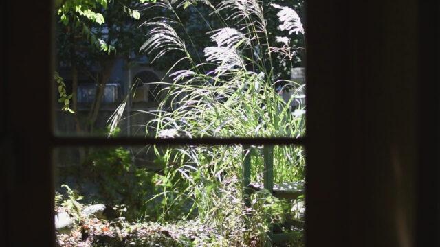 設計事務所のアトリエ 秋の窓辺(木製窓)の画像