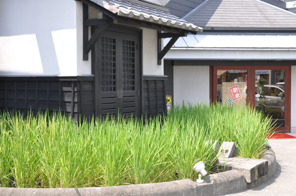 米屋 設計 デザイン